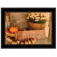 "ANT106-704G ""Autumn Harvest"""