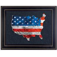"TDAR135USA-G-704G - ""WTP American Flag"""