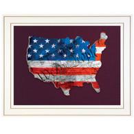 "TDAR135USA-B-226G - ""WTP American Flag"""