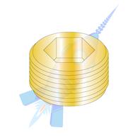 1/4 Dry Seal Socket Pipe Plug Brass