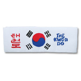Tae Kwon Do Headband