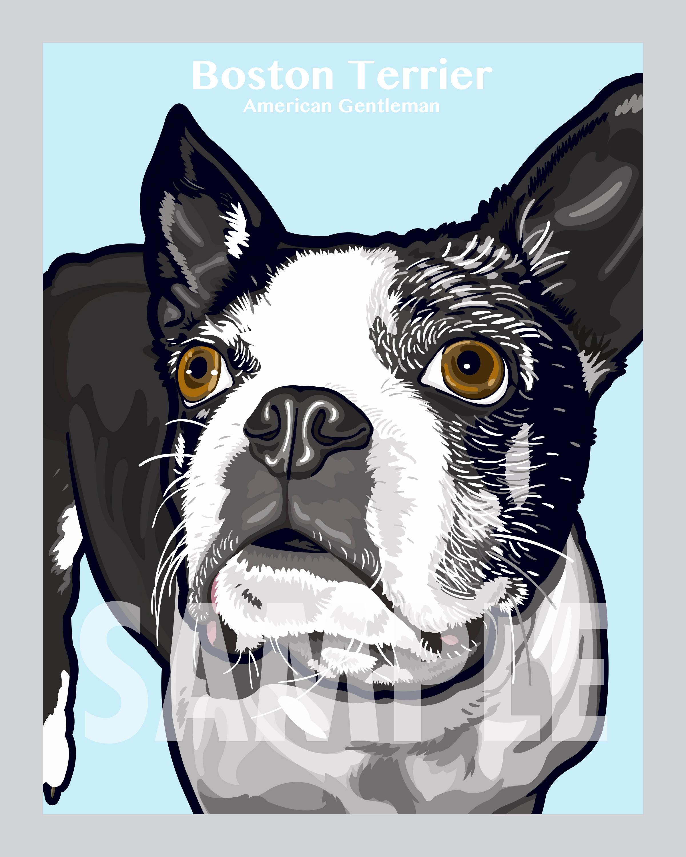 boston-terrier-art-sample.jpg