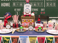 Baseball Time Basic Party Pack