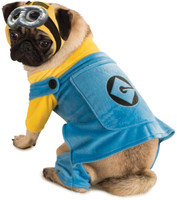 Despicable Me Pet Costume