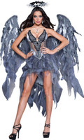 Dark Angel's Desire Adult Costume