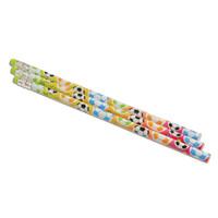 Soccer Pencils (12) 2