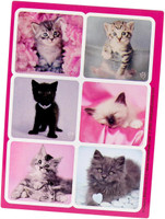 rachaelhale Glamour Cats Sticker Sheets