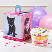 rachaelhale Glamour Cats Cupcake Boxes