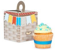 Up, Up and Away Cupcake Boxes