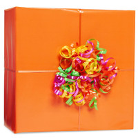 Orange Gift Wrap Kit