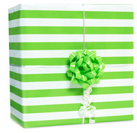 Kiwi Stripe Gift Wrap Kit
