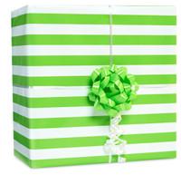 Kiwi Stripe Gift Wrap Kit