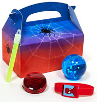 Spider Hero Dream Party - Party Favor Box
