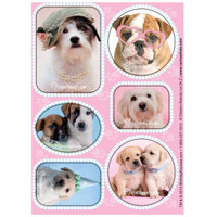 rachaelhale Glamour Dogs Sticker Sheets