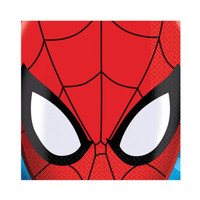 Spider Hero Dream Party Beverage Napkins