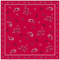 Western Bandana Lunch Napkins