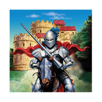 Valiant Knight Beverage Napkins (16)