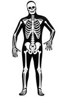 Skeleton Zentai Adult Costume