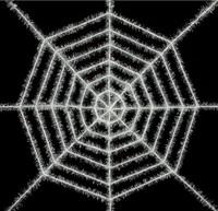 White Shimmering Web 40'
