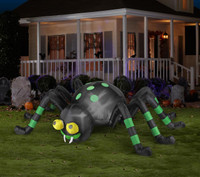 Spider with Green Stripe Animated Airblown