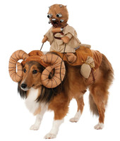 Star Wars Bantha Rider Pet Costume