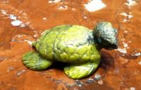 Zuni Turtle Fetish Karen Zunie ZTFKZ12