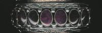 BRACELETS NAVAJO SILVER SPINEY OYSTER SHELL JEANETTE DALE SOLD
