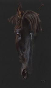Black Horse artwork by Kay Johns