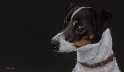 Jack Russell artwork by Kay Johns