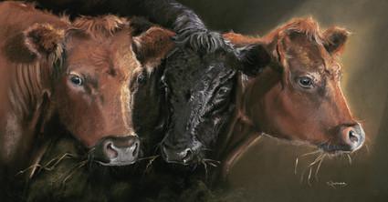 Dexters artwork by Kay Johns
