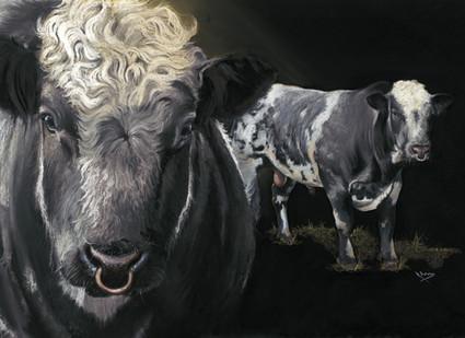 British Blue Bull artwork by Kay Johns