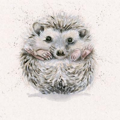 Hedgehog artwork by kay Johns