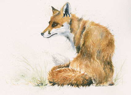 Fox artwork by Kay Johns