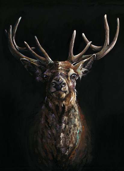 Red Stag Artwork by Kay Johns