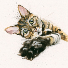 Tabby cat artwork by Kay Johns