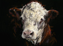 NEW Hereford Bull painting by Kay Johns