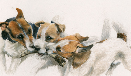 Jack Russell limited edition painting by Kay Johns