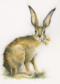 'Just Dandy' hare artwork by Kay Johns