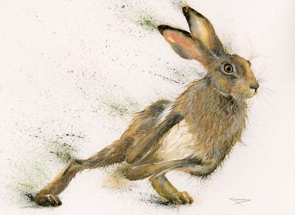 'Skidaddle' hare artwork by Kay Johns