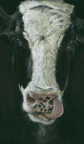 Dairy cow artwork by Kay Johns