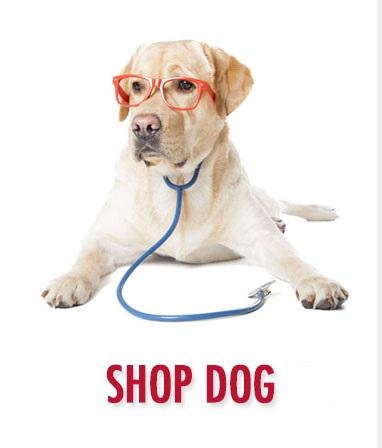 Dog Meds