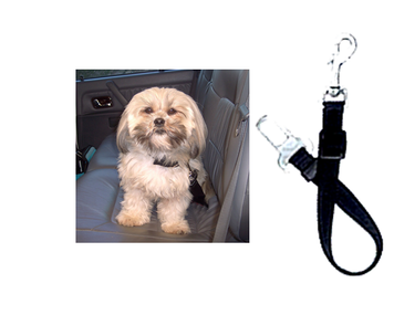 Car Seat Belt Lead - Large