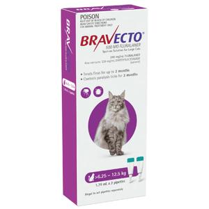 Bravecto for large cats flea & tick treatment