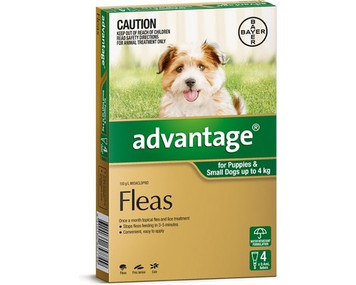 Advantage for Dogs up to 4 kgs (up to 10 lbs) - Green - 4 Pack