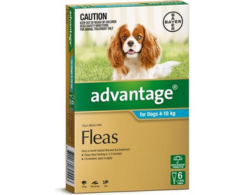Advantage for Dogs 4-10 kgs (11-20 lbs) - Teal - 6 Pack