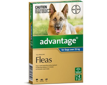 Advantage for Dogs over 25 kgs (over 55 lbs) - Blue - 4 Pack