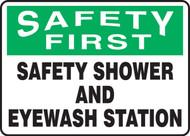 Safety First - Safety Shower And Eyewash Station