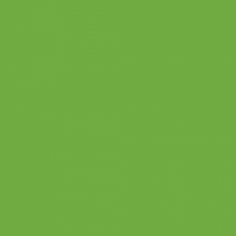 "Oracal 631 - Lime Tree Green - 063 -  12"" x 10 Ft. Rolls"