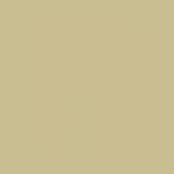 "Oracal 631 - Dark Beige - 816 - 12"" x 24"" Sheets"