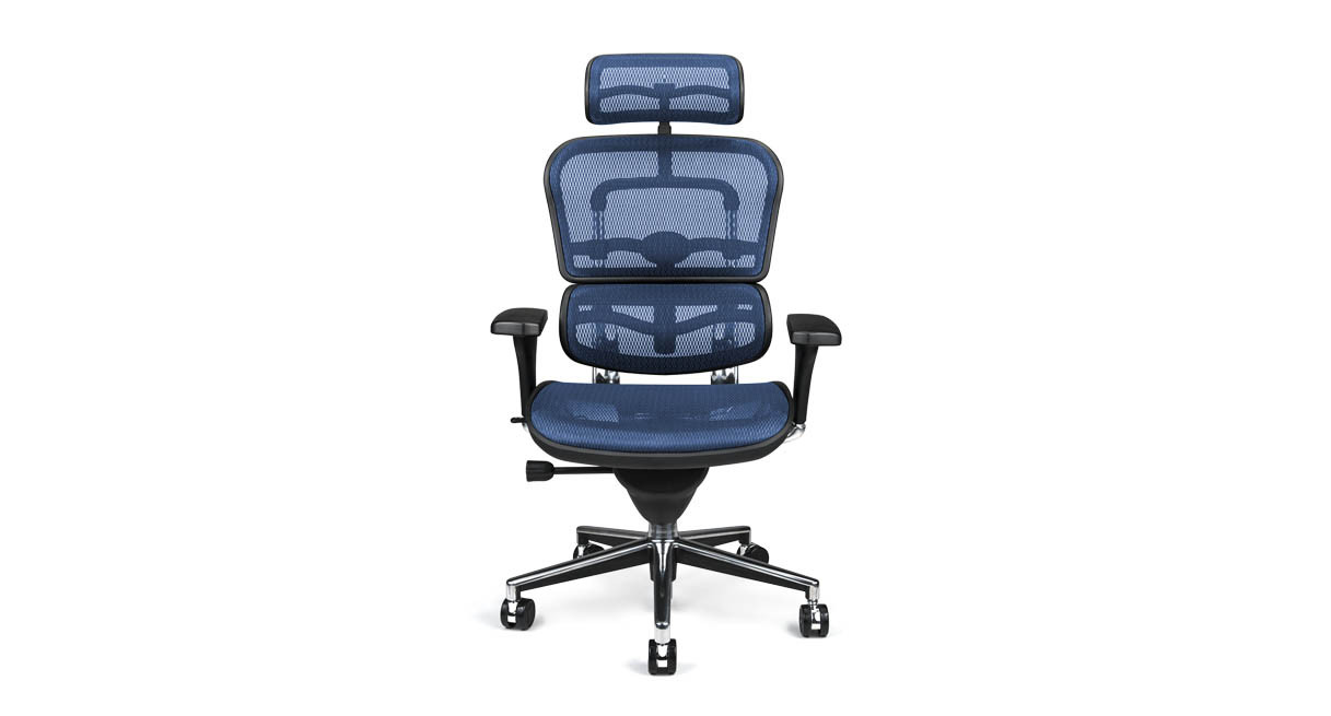 Raynor Ergohuman Chair Mesh With Headrest